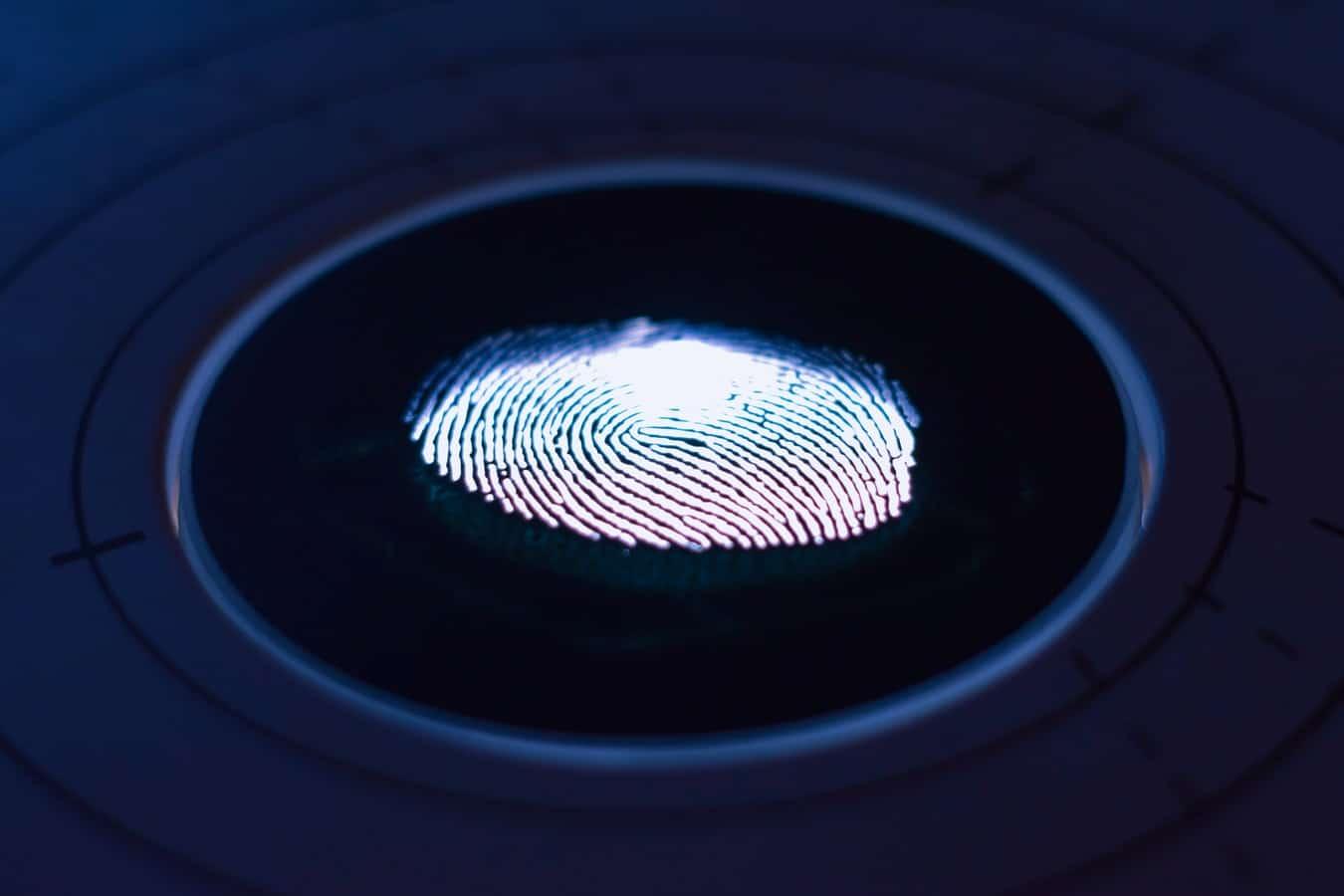 Fingerprint Philosophy